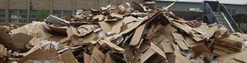 废纸撕碎机物料撕碎前